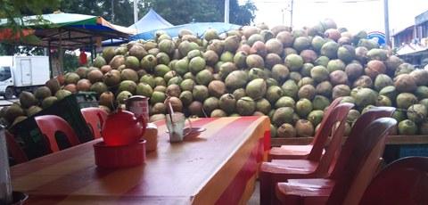 coconut shake batu berendam